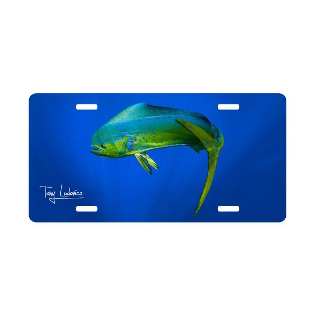 custom nautical fine art license plate get bent mahi mahi dolphin. Black Bedroom Furniture Sets. Home Design Ideas