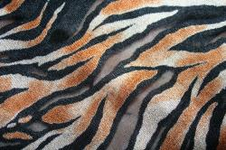 a3040acb83 ANIMAL PRINT Tiger Sheer Stretch Mesh fabric 60 on PopScreen